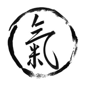 Qi – ul