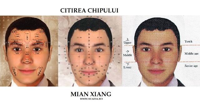 Analiza trasaturilor faciale dupa metoda MIAN XIANG