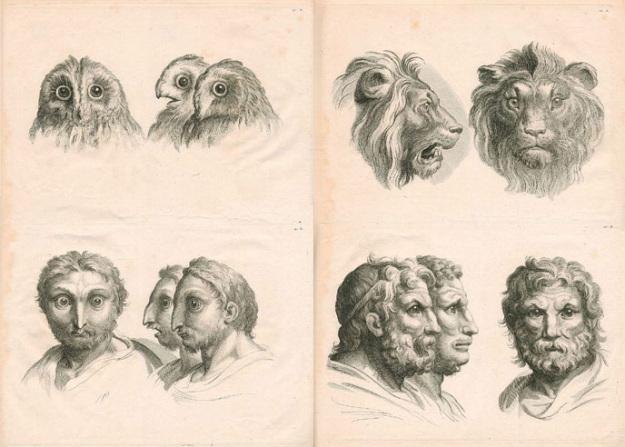 Fizionomia-arta citirii chipului dezvaluie secretele oamenilor