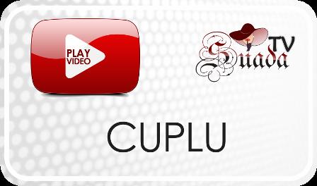 Această imagine are atributul alt gol; numele fișierului este Logo-Suada-CUPLU.png